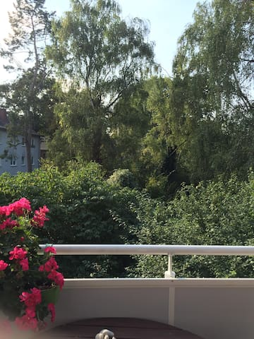 Quiet, sunny App. near Trainstation - Wiesbaden - Apartmen
