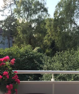 Quiet, sunny App. near Trainstation - Wiesbaden - Apartamento