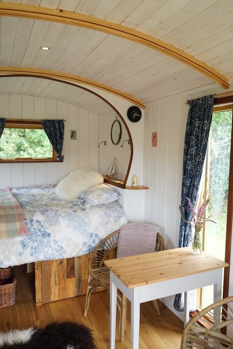 Dragonfly Shepherds Hut Cresselly