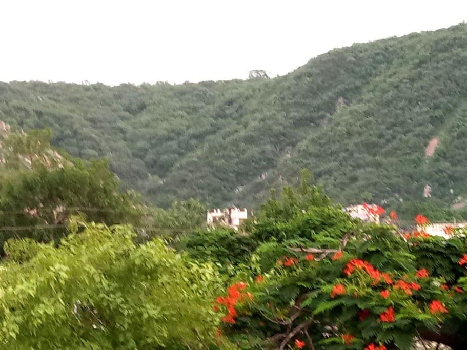 The scenic Aravali mountains