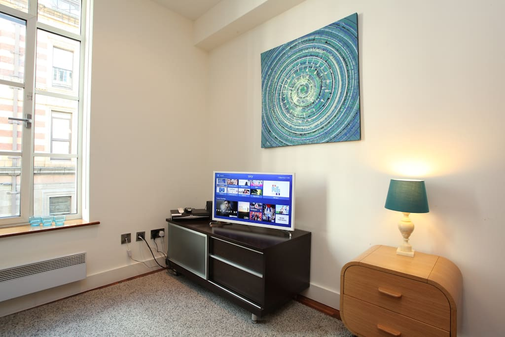 Flat screen TV with a connection to SKY