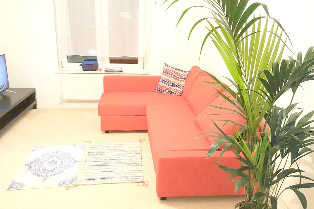 Comfortable Sofa with lots of space to relax. Flat screen TV with Netflix