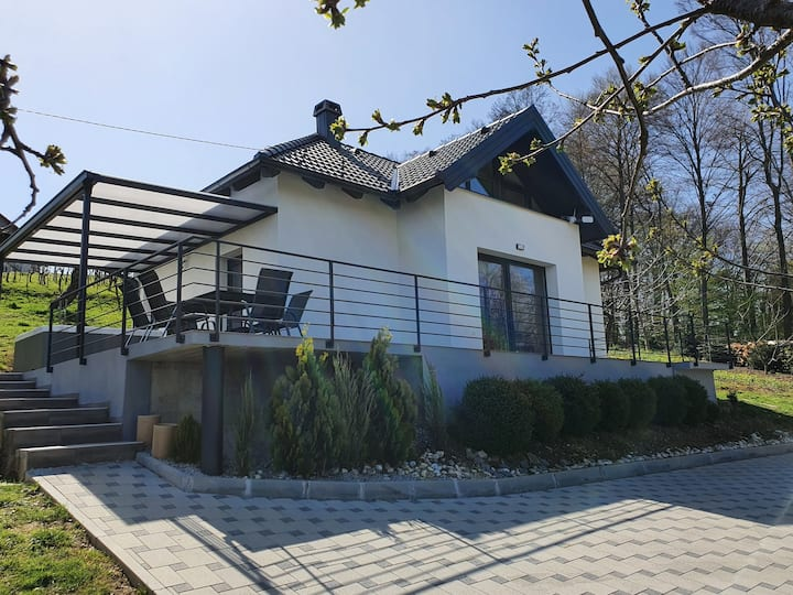 Holiday home Beretinec Hills