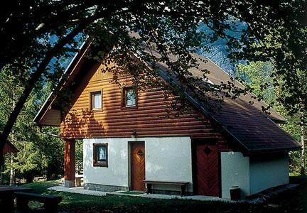 First floor apartment - Bohinjsko jezero - Wohnung