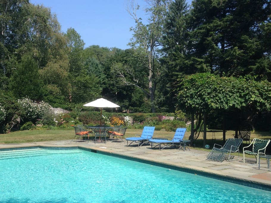 Pool area and gardens, outdoor seating for eight, relax in the shade of the grape arbor