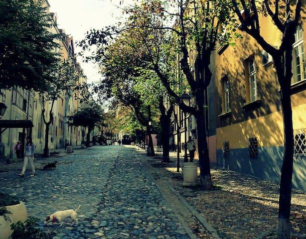 PROMO Central-Pedestrian Zone Famous Skadarska st. - Beograd - Appartement