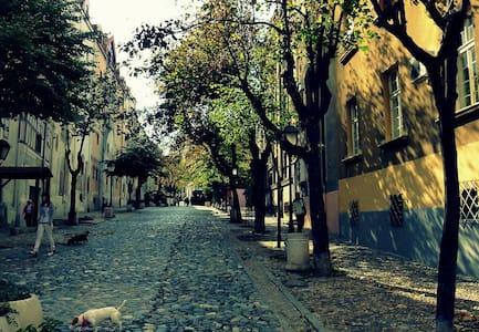 PROMO Central-Pedestrian zone famous Skadarska st. - Beograd - 公寓
