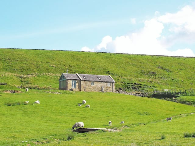 Cosy Eco Bothy, Hadrian's Wall - Good Dogs Welcome