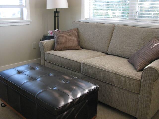 Pull out sofa with queen bed in loft