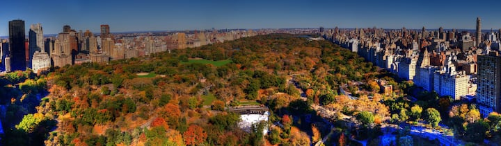 Stay in a Suite Overlooking Central Park