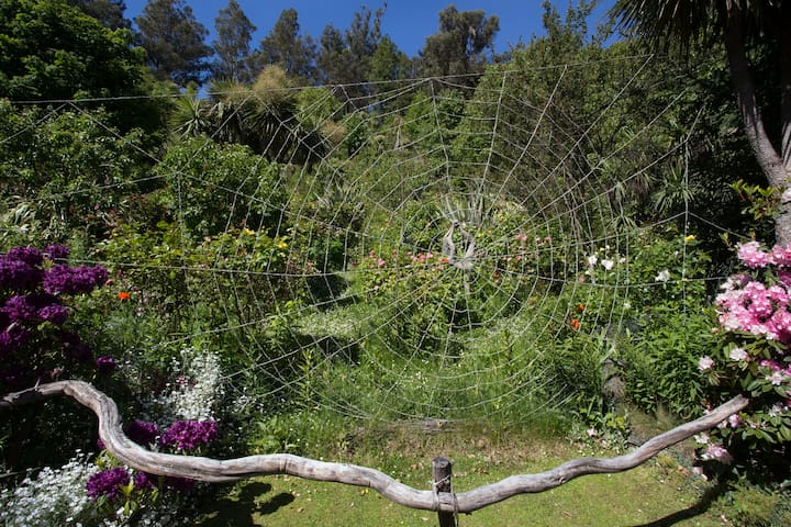 A huge Spider web  coated  with small gravel.