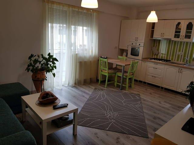 Olive Apartment Sibiu