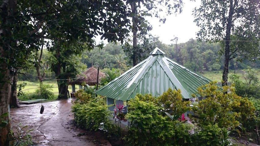 Madhuvan homestay- Dandeli