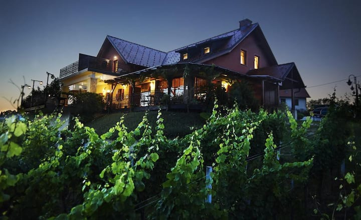 Family room with beautiful view of the vineyards