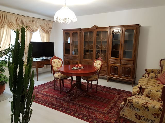 Rent Holding - Vintage - ultracentral apt in Iasi