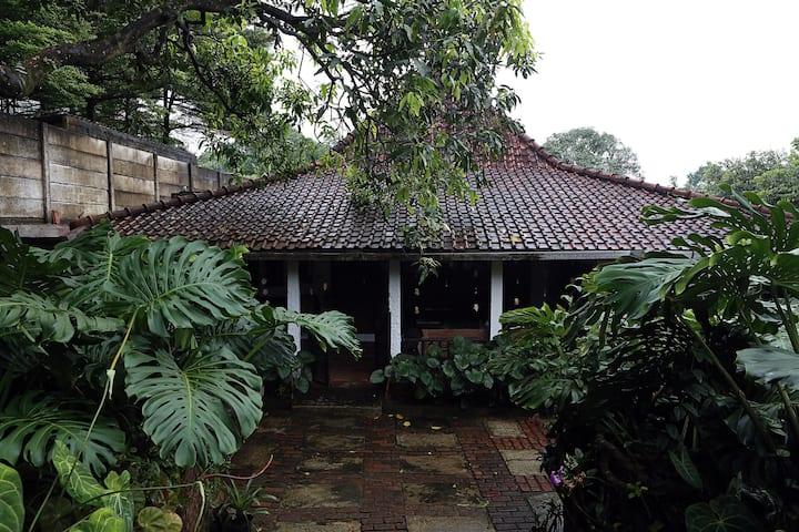 Rumah Bagus Bagus - Sentul (Gn Pancar, JungleLand)