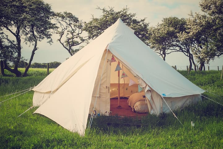 'Bells & Whistles' Upgraded Tent - Widdrington