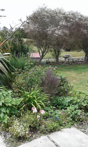 Totaranui Rural B & B - Wainui - Bed & Breakfast