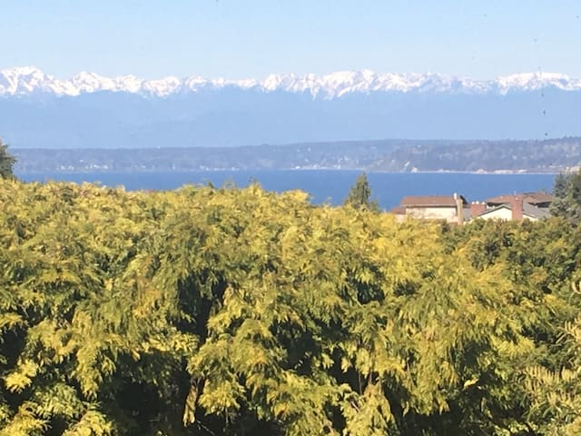 North Seattle Home with a Mountain and Sound View.