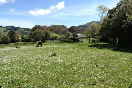 Country Villa On Organic Fruit Farm - Mangatawhiri