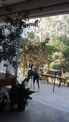 Conforto e silêncio em ambiente aconchegante - Alto Paraíso de Goiás - Hus