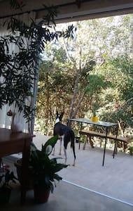 Conforto e silêncio em ambiente aconchegante - Alto Paraíso de Goiás - House