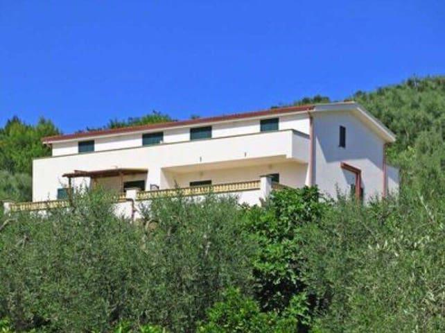 Villa immersa nel verde