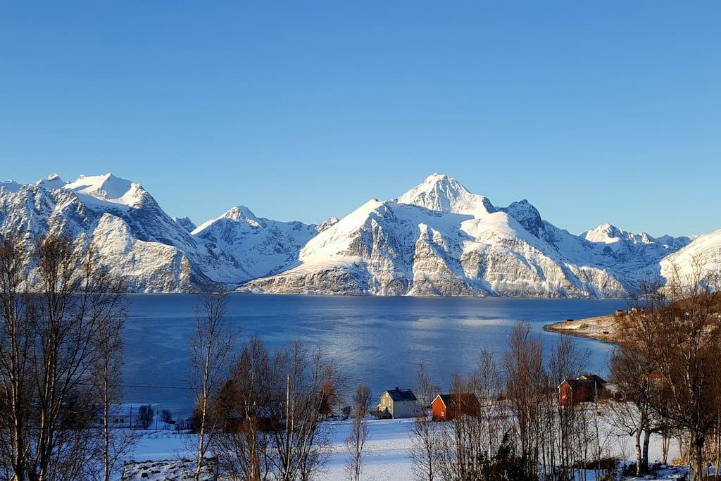 Djupvik at the Lyngenfjorden.