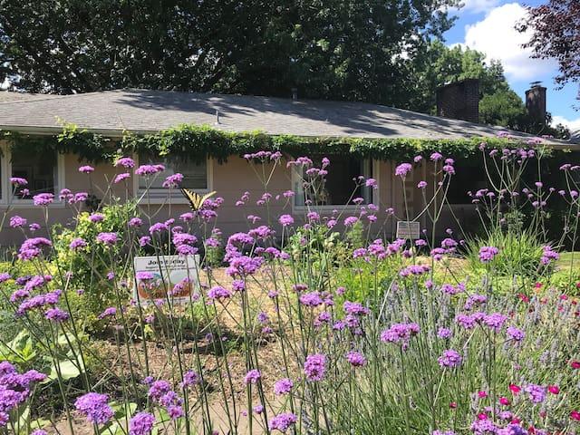 Art House and Urban Farm