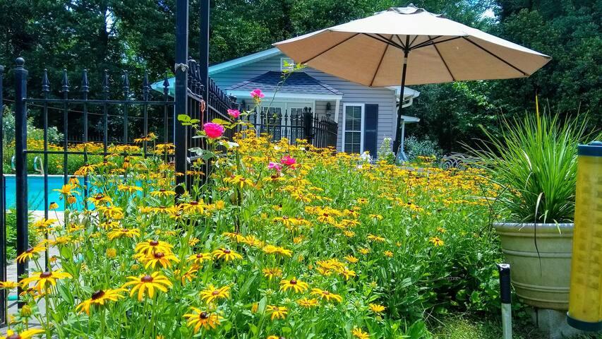 Clarkesville Cottage 1 BR Garden Getaway w/ Pool
