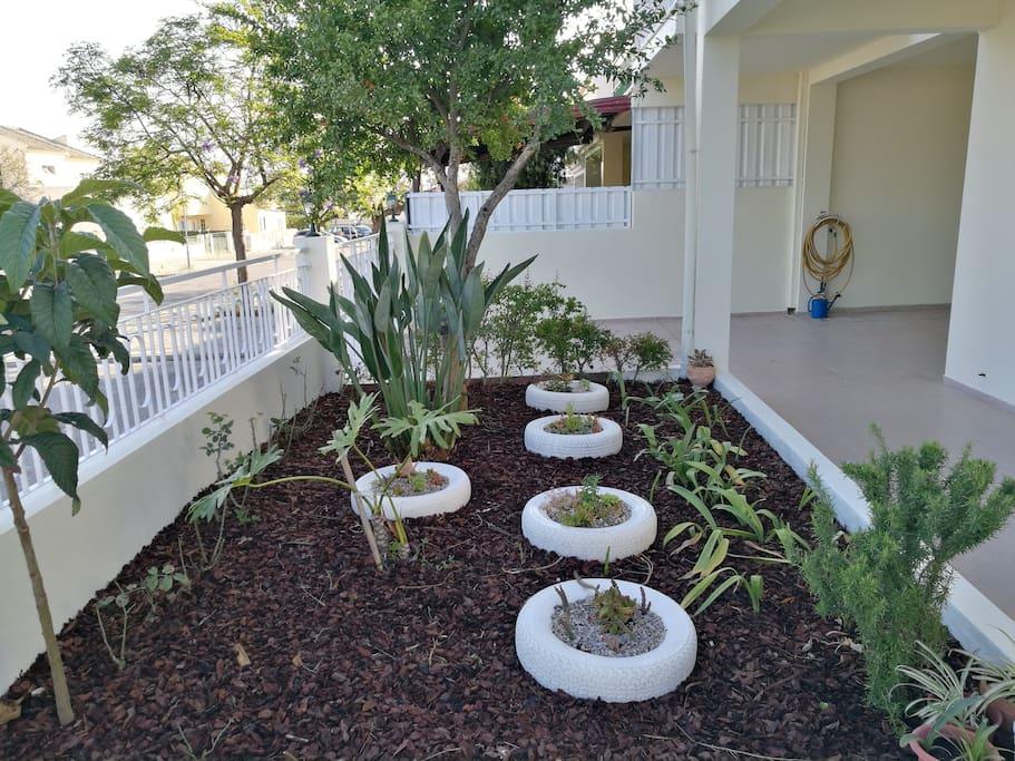 O jardim de entrada.