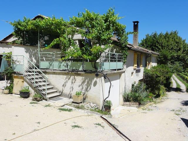 une oasis au milieu des vignes  Tilleul - Montélimar - Appartement