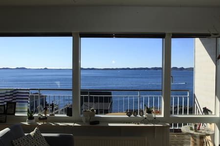 Whalewatching from the livingroom - Nuuk