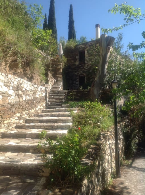 a lot of steps will bring you to nice views