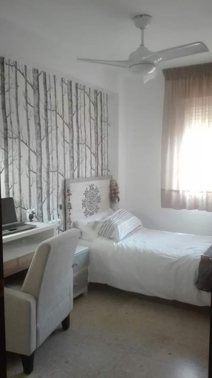 Single room in hisctoric center of Cordoba