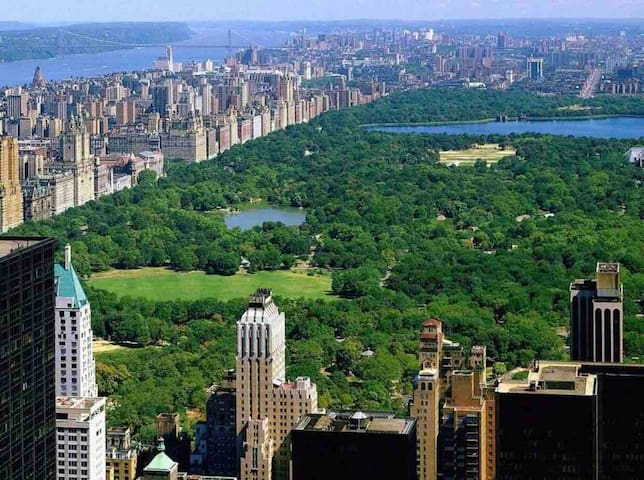 Central Park 8 miles away from apartment