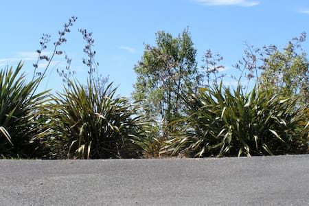 2 Views at Tasman - Ruby Bay - Bed & Breakfast