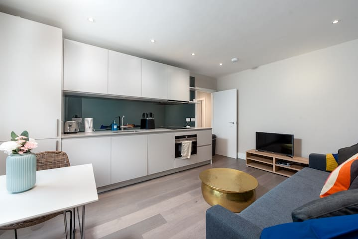 Contemporary One Bedroom Flat in Chelsea - MC