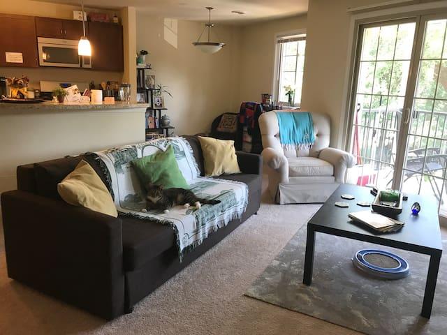 Queen Sleeper Sofa in Living Room | Parking/Bus