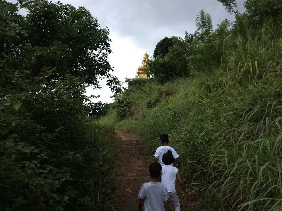 Trek to the golden Buddha Statue facing the Aluwihare Cave Temple