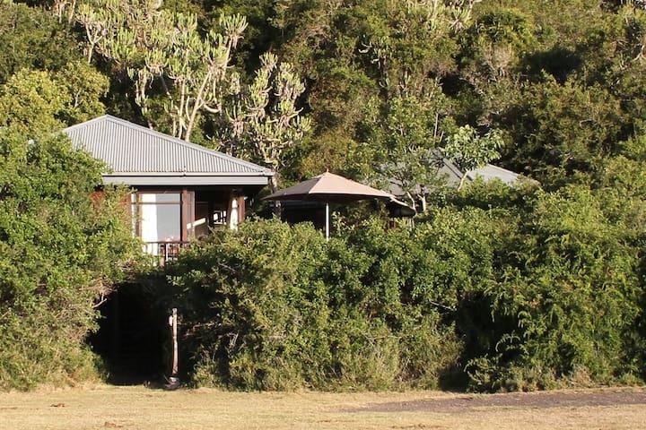 Emlanjeni Lodge - Emlanjeni Private Game Reserve - Kenton-on-Sea - Haus