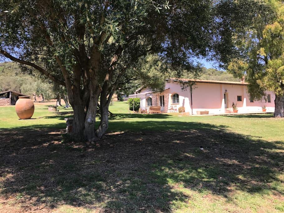 Main house, separate entrance