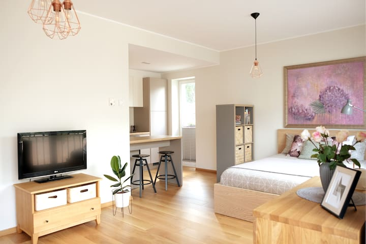 Brand-NEW centric studio flat in the Old Town