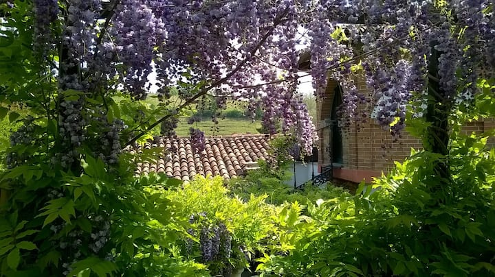 Casa Sonny: cottage in magical garden 3km old town