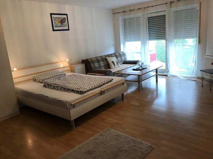 Schöne Wohnung mit Balkon (N. Landesärztekammer)