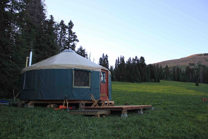 Whole Enchilada Starting Gate! Geyser Pass Yurt