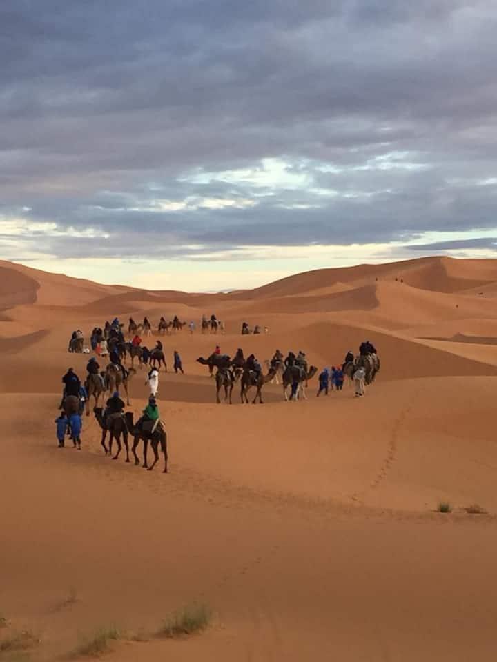 Bivouac la fibule des Dunes
