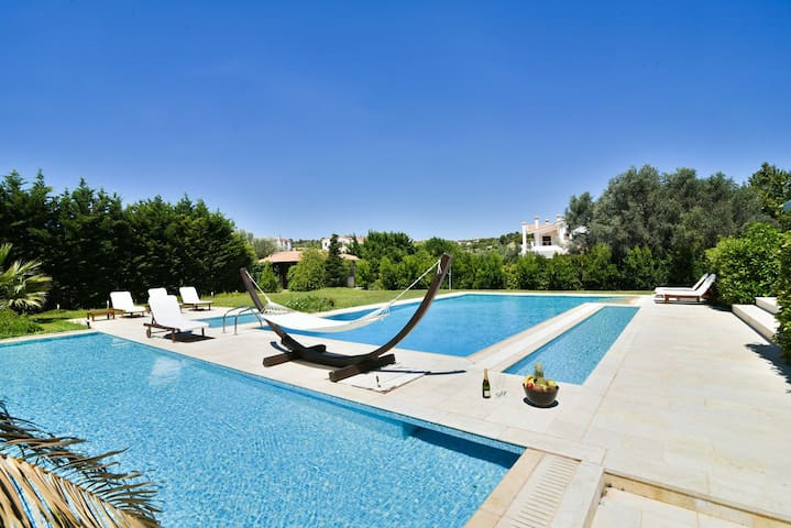 Pool area with sun beds and hammock