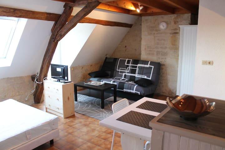 Studio à La Roche Posay avec WIFI en centre-ville - La Roche-Posay - Daire
