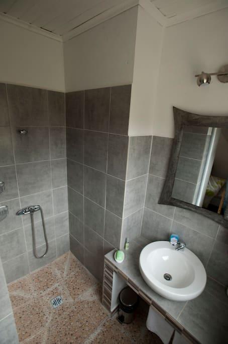 salle de bain avec douche à l'italienne grand miroir